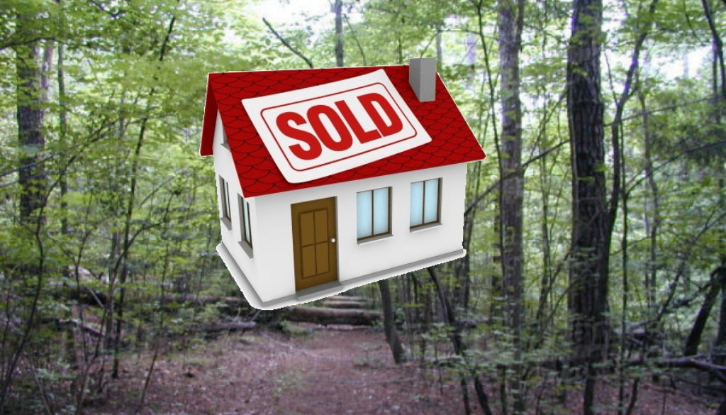 Forest-Sold